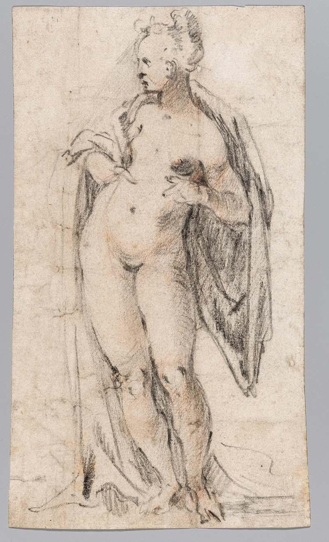 Goltzius, Hendrick (1558-1617), Naga kobieta z zarzuconą na ramiona tkaniną, ok. 1600, czarna kredka, czerwona kredka, papier, (fragment tarczy herbowej), 18 x 10,5 cm